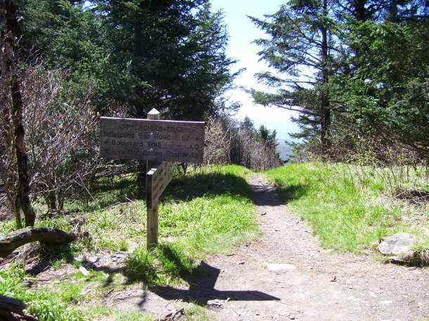 The AT sign at the start of the hike