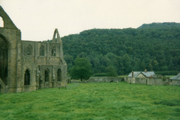 Tintern Abbey Fields