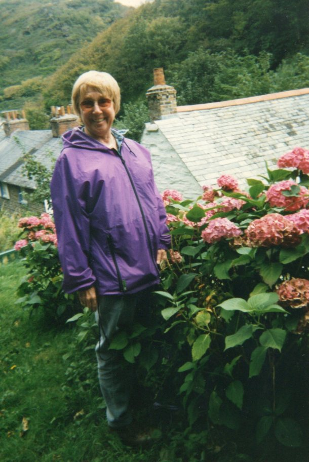 Lee checking out the hydrangeas at Boscastle
