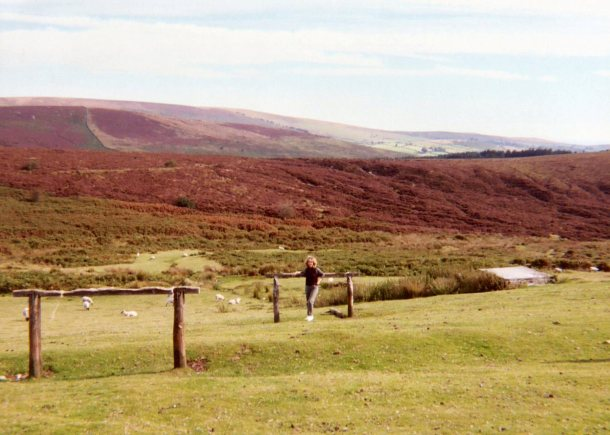 A view of Dartmoor - a wonderful wild place