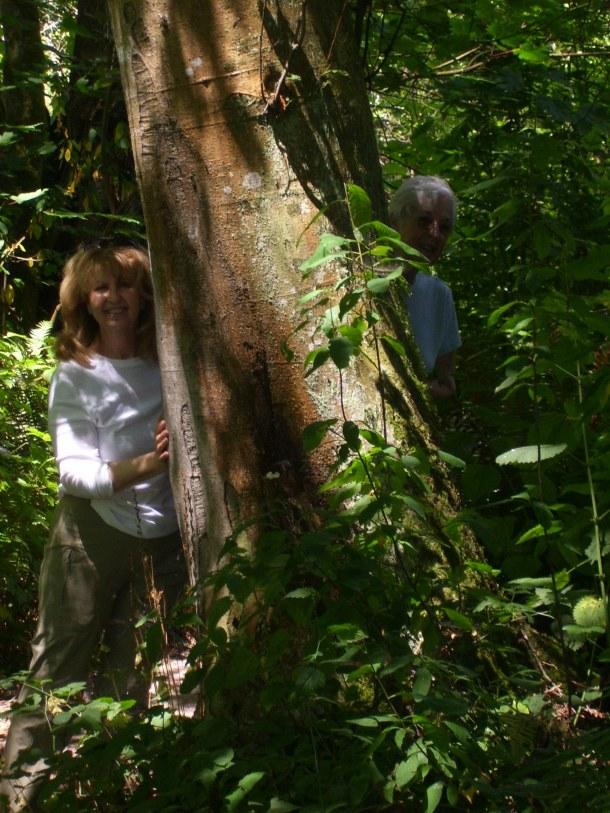 Yes, I am a tree hugger