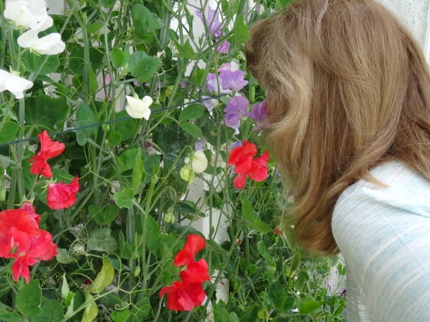 Stopping to smell the ... sweet peas